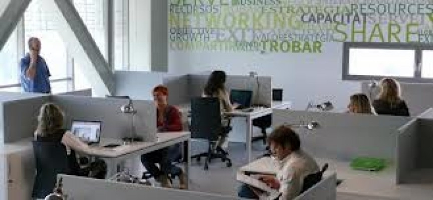 El centro de empresas de PalmaActiva se amplía con un nuevo espacio de coworking de 11 plazas