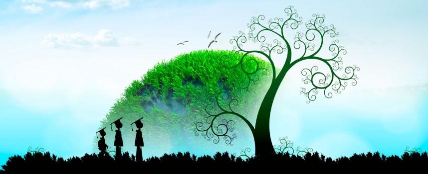 Financiación colectiva para tu empresa verde: oportunidades del crowdfunding