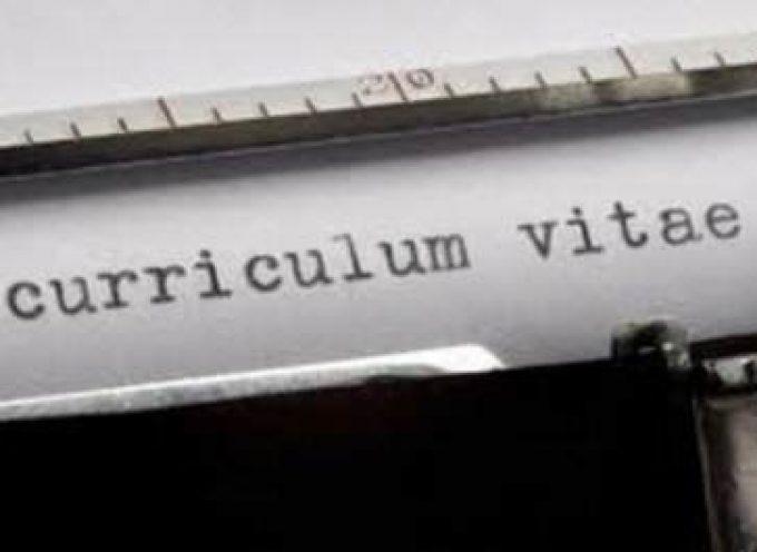 Interesante herramienta para el Curriculum Vitae On-line y para perfeccionarlo.