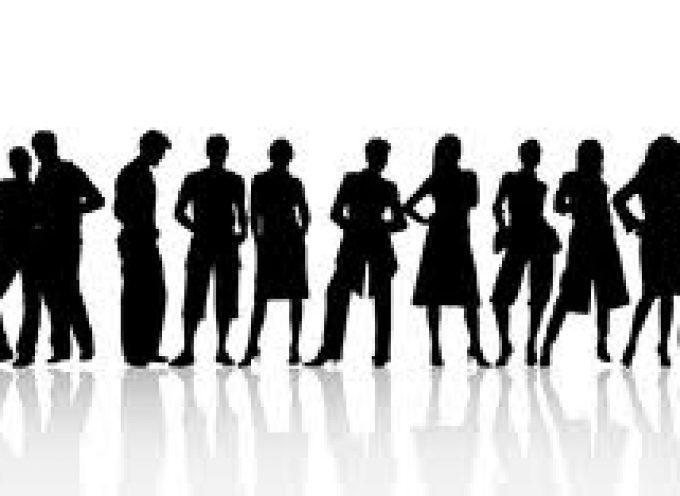 Candidatos sobrecualificados: solo 1 de cada 5 tiene el nivel de estudios requerido
