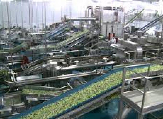 Empleo: los sectores agrario, turístico e I+D+i son los que tienen las mejores perspectivas laborales