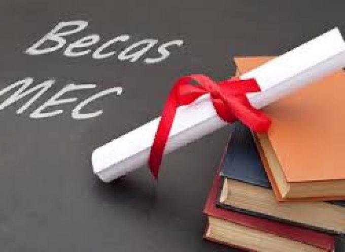 Becas para el curso 2014-2015: requisitos y cuantías