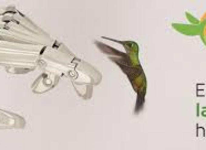 iBird Last Mile prevé crear 3.500 empleos