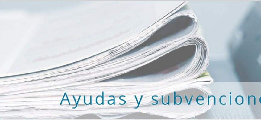 SUBVENCIONES Y AYUDAS I+D+I (2020 HORIZON)