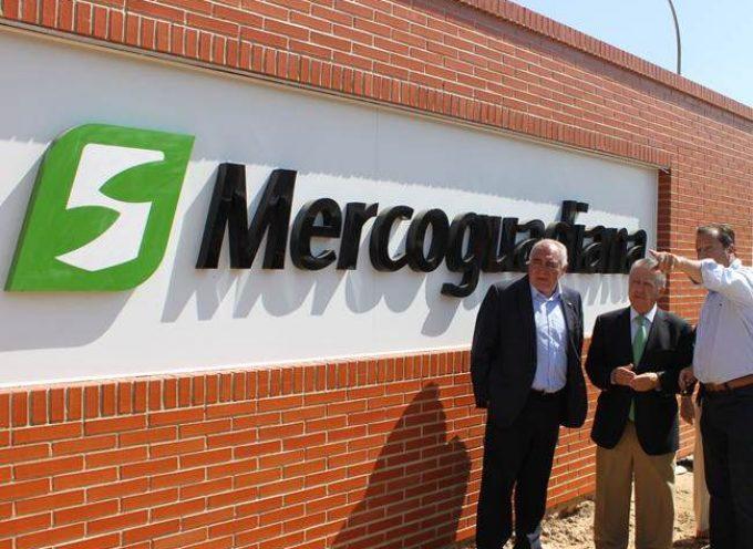 La nueva planta de Mercoguadiana creará un número importante de puestos de trabajo