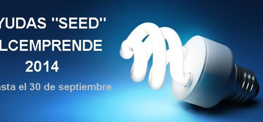Valencia abre el plazo para solicitar las ayudas SEED VLCemprende 2014 (30 septiembre)