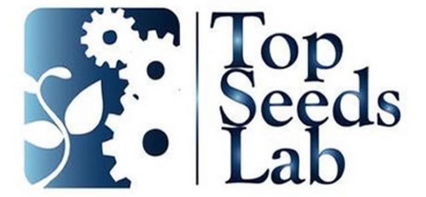 Abierta la V convocatoria de la aceleradora de startups Top Seeds Lab (hasta 21 septiembre)