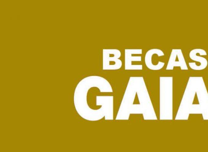 Becas Gaia para realizar prácticas profesionales en el extranjero