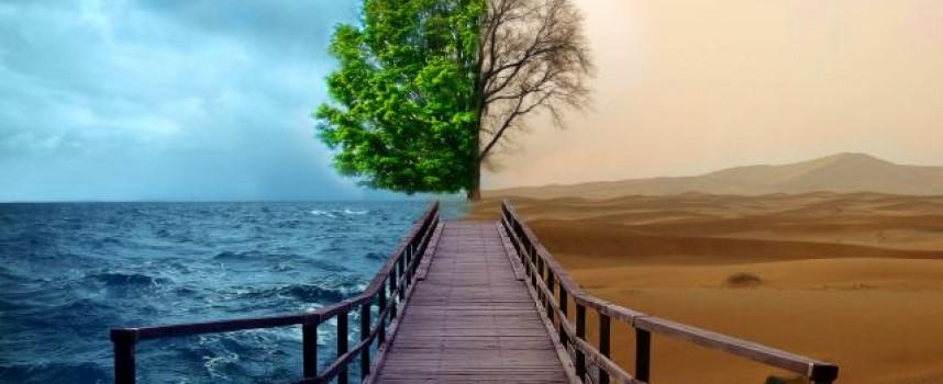 20 tips sobre el cambio climático que no te dejarán indiferente