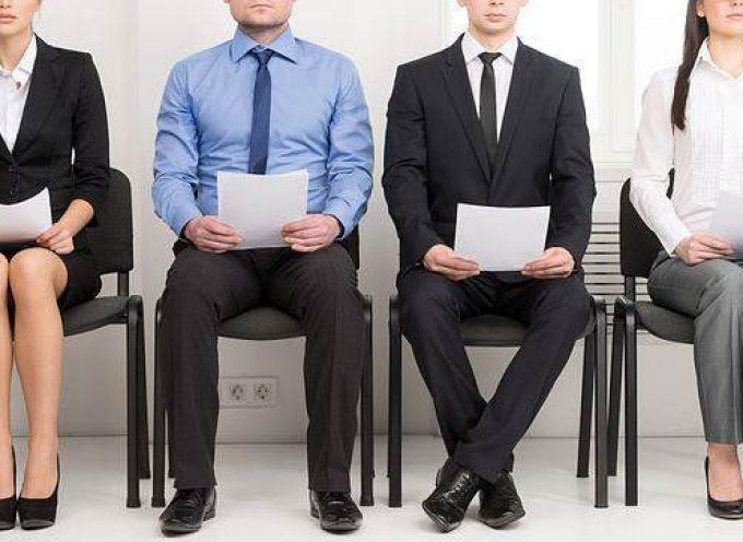 ¿Qué suma puntos en tu perfil de empleo? Desmárcate de la competencia
