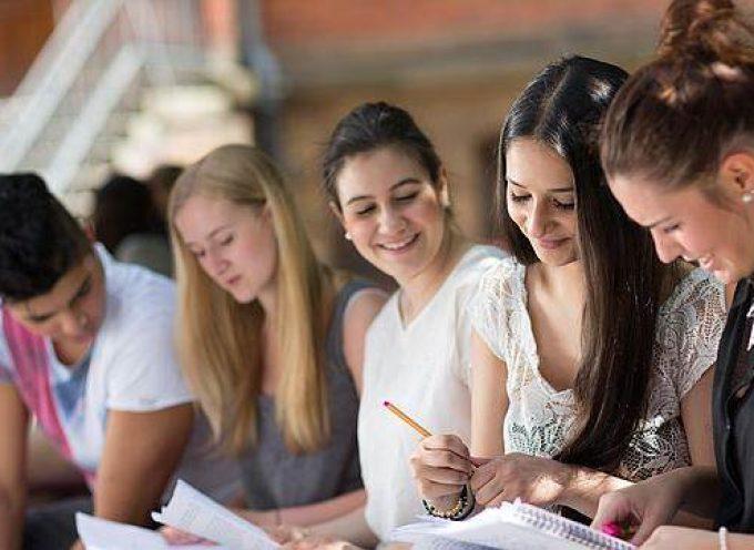 Los postgrados se consolidan ¿a quién se le demanda esta cualificación?