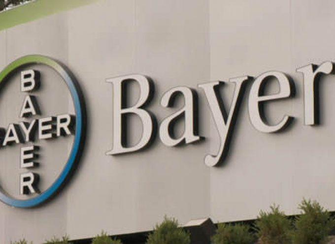 Becas de la Fundación Bayer para estudiantes y recién titulados. Hasta el 10 de julio