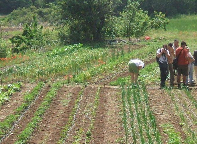 Presentamos el manual para la dinamización agroecológica