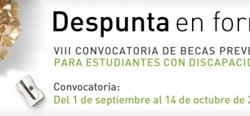 Becas para estudiantes con discapacidad. Hasta el 14 de octubre.