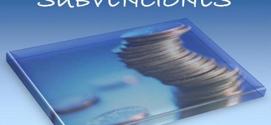 SUBVENCIONES PARA EL ABONO DE CUOTAS DE LA S.S (Castilla La Mancha)