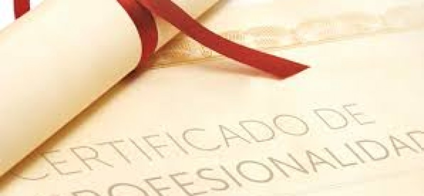 Información Sobre Los Certificados De Profesionalidad