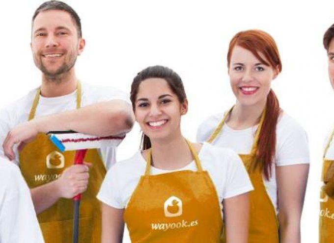 220 Profesionales para servicios de limpieza y servicios domésticos.