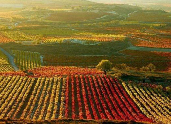 El Gobierno de Castilla-La Mancha se propone ser pionero en la regulación del ecoturismo