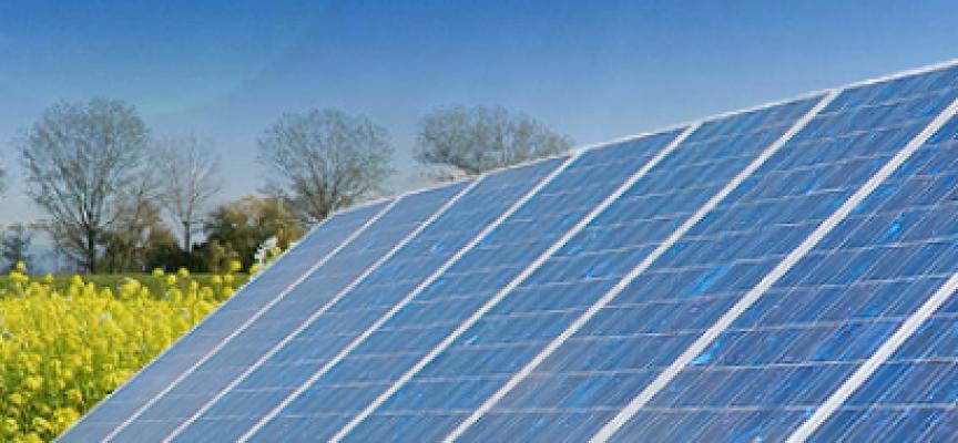 Impacto ambiental positivo para la megaplanta fotovoltaica de 300 MW en Talaván