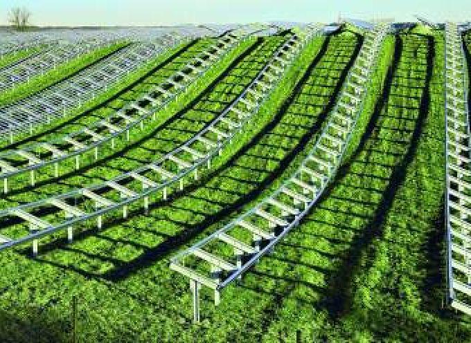 Luz verde a los 2.000 empleos del megaproyecto de Gehrlicher Solar.