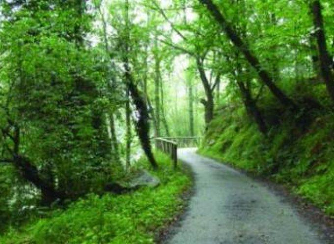 Un medio rural vivo necesita más política de desarrollo rural dentro de la PAC