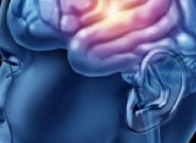 Estimula tu cerebro para vivir más y mejor – ELSA PUNSET