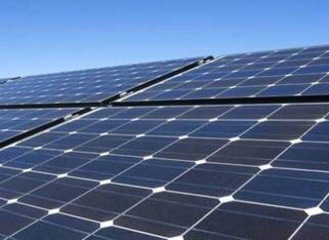 Elche cederá la bolsa de empleo municipal para la selección de trabajadores de la planta fotovoltaica