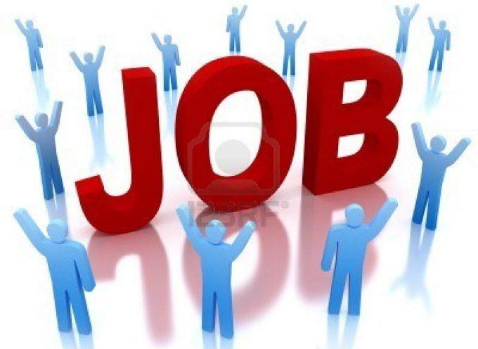 Portal con más de 100 ofertas de empleo este mes en España