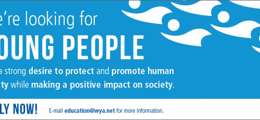Programa global de prácticas internacionales dirigido a jóvenes.