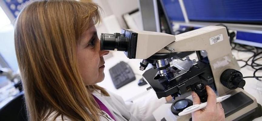 Convocatorias de empleo y becas para investigadores en Murcia. Hasta el 16 de marzo