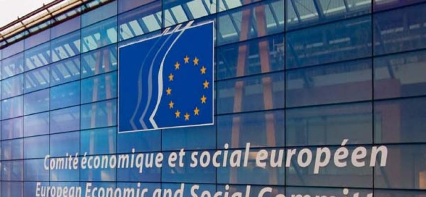 Prácticas en el Comité Económico y Social Europeo.