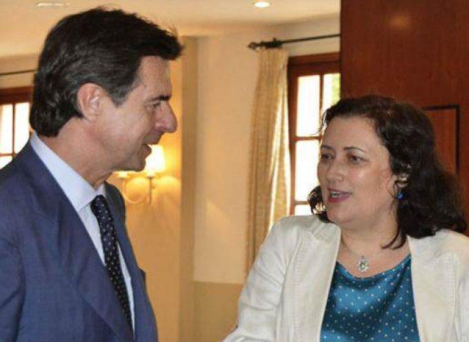 El Cabildo de La Palma anuncia ayudas para emprendedores que constituyan empresas en la isla