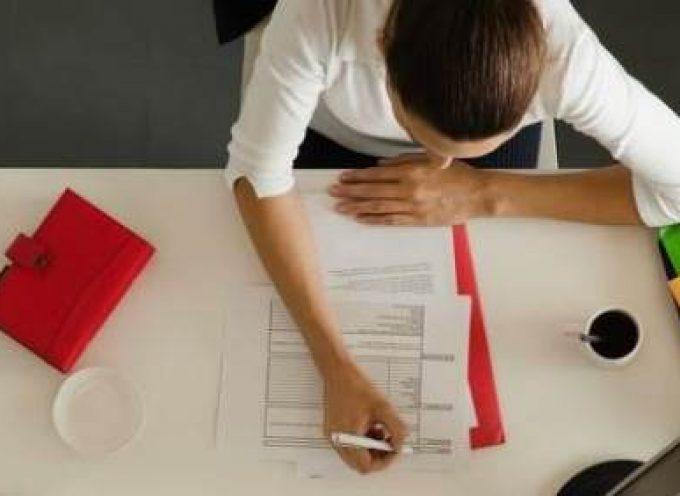 Ofertas de empleo en las áreas de ADE, Informática, Derecho, Turismo…