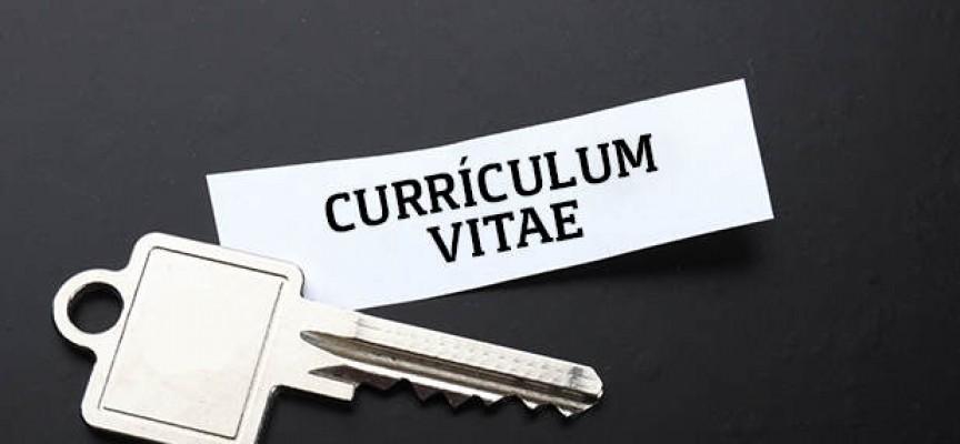 Las aficiones en el currículum