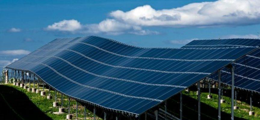 590 empleos directos en la mayor central de producción de energía solar fotovoltaica. Lorca.