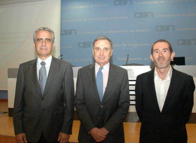 Estudio sobre perfiles profesionales del Sector de Nuevas Tecnologias de la Información y Comunicación de Navarra. Nuevos Yacimientos de Empleo.