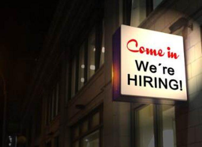Los 5 Aspectos Clave para Crear una Buena Oferta de Empleo