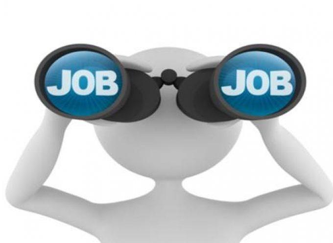 Manual urgente para conseguir un empleo