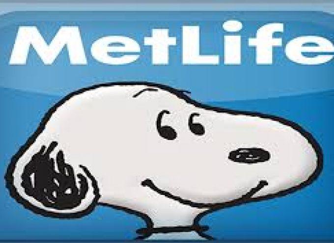 Metlife abre su academia de talentos, un programa de prácticas profesionales para recién licenciados