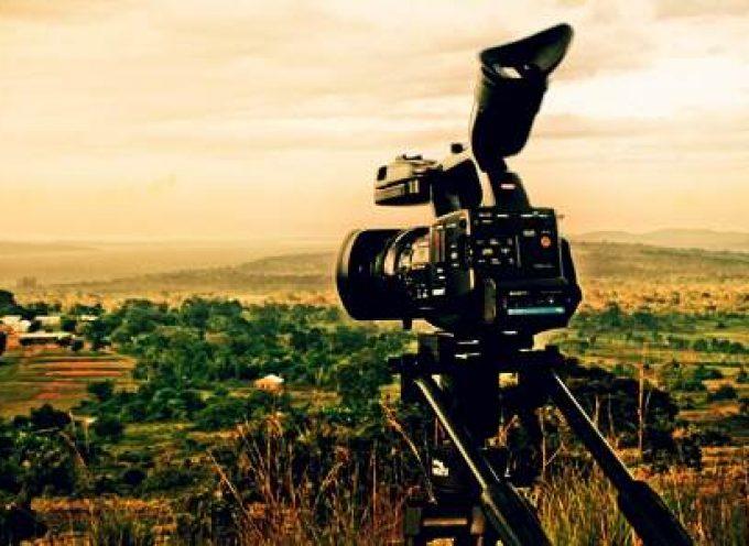 Becas de periodismo ambiental. Hasta el 15 de julio