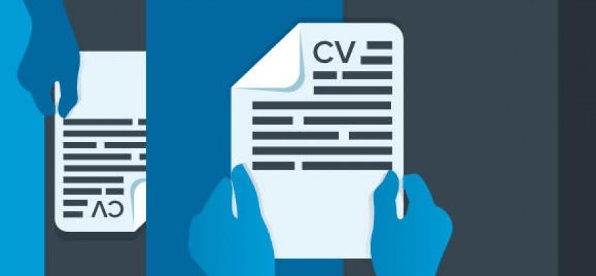 Cómo crear el CV perfecto
