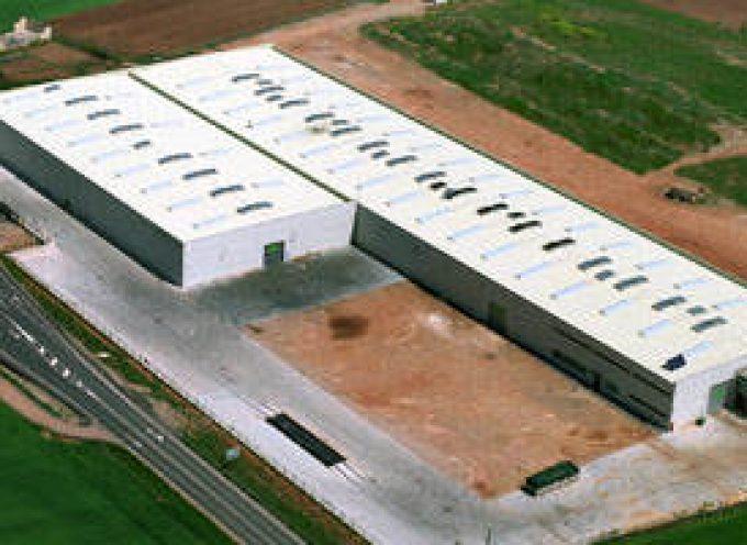GARNICA Plywood prevé crear cientos de nuevos puestos de trabajo.