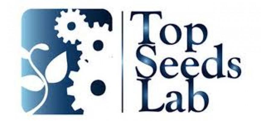 Lanzan la VII edición del programa Top Seeds Lab para apoyar proyectos emprendedores