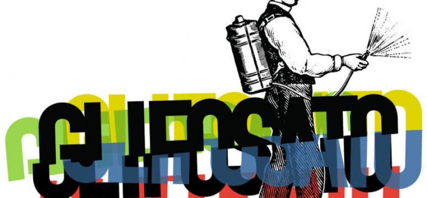 Glifosato: el herbicida más utilizado en España es declarado cancerigeno.