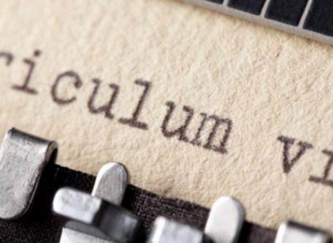 Currículum vitae como principal herramienta de empleo