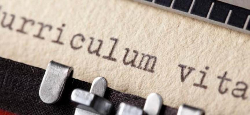 6 claves para hacer destacar tu Currículum