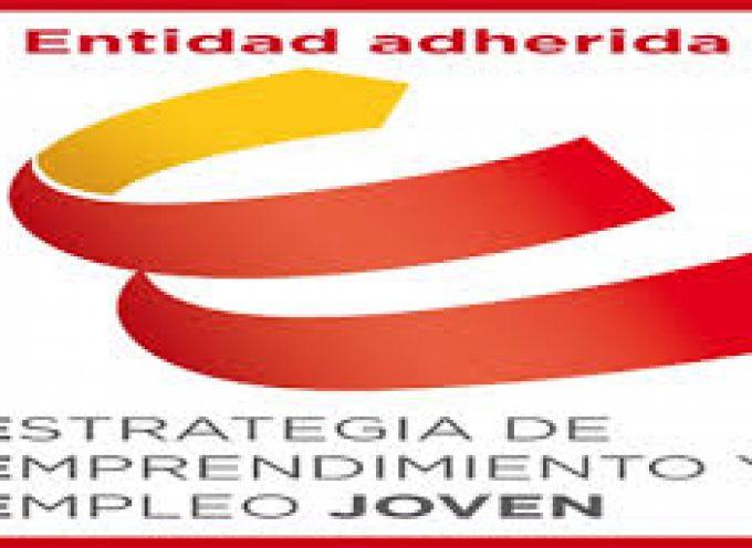 Directorio de nuevas empresas adheridas al programa de Empleo Joven. (Proyectos de empleo).