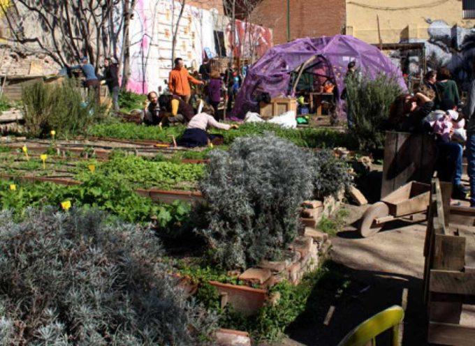 Impulsan en Alicante un proyecto de red de huertos sociales para impulsar el autoempleo