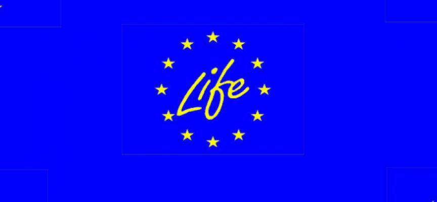El programa Life de la Comisión Europea ya está abierto en su convocatoria 2015. Hasta el 15 Septiembre