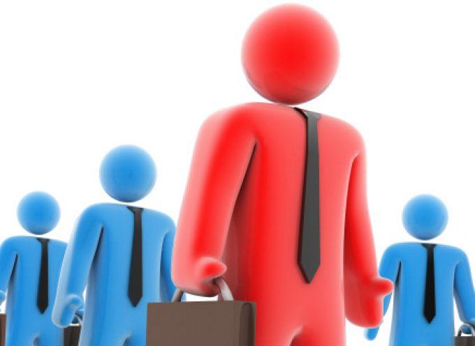 Competencias, habilidades y aptitudes ante un proceso de selección